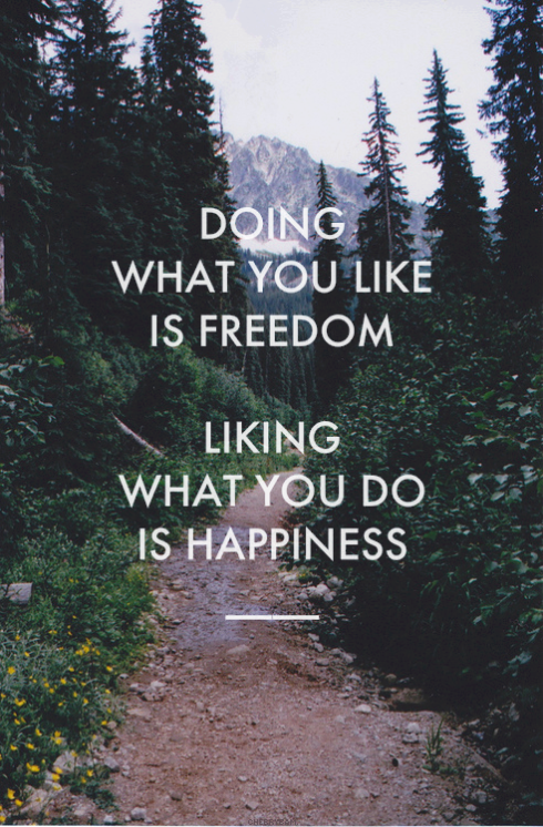 Doin what you like is freedom